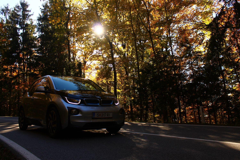 Auto auf einer Straße durch den Wald